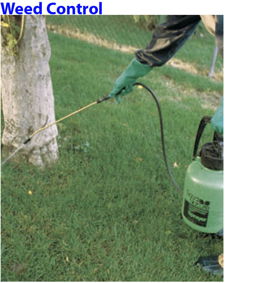 yosemite pest control residential services yard garden control